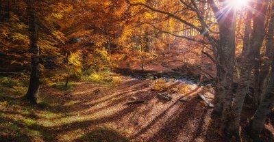 four seasons Bulgaria